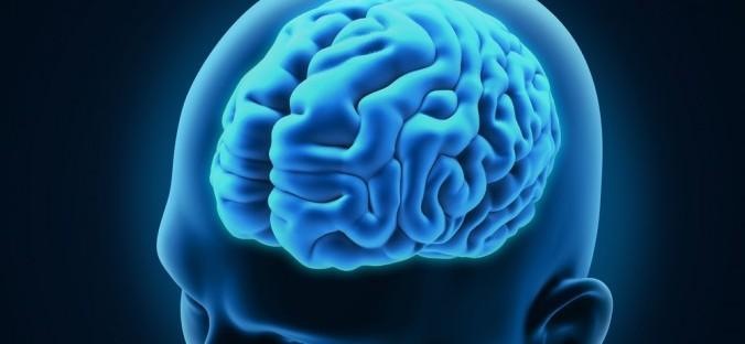 7 митови за мозокот во кои сите луѓе веруваат