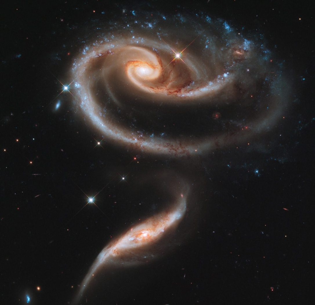 #АстроФотоНаДенот - Вселенска ружа