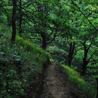 (3) Прошетка низ Македонија: Орешенски водопади