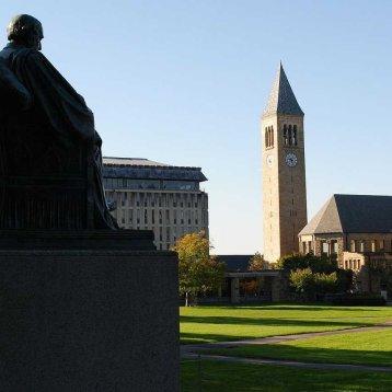 10. Cornell University (Америка)