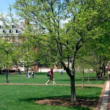 16. Johns Hopkins University (Америка)