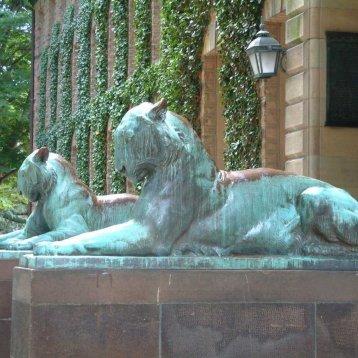 9. Princeton University (Америка)