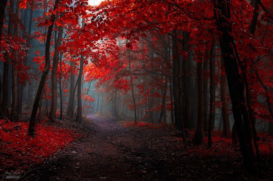 (1) Прекрасни есенски пејсажи кои ќе ве опуштат и подготват за ниските температури