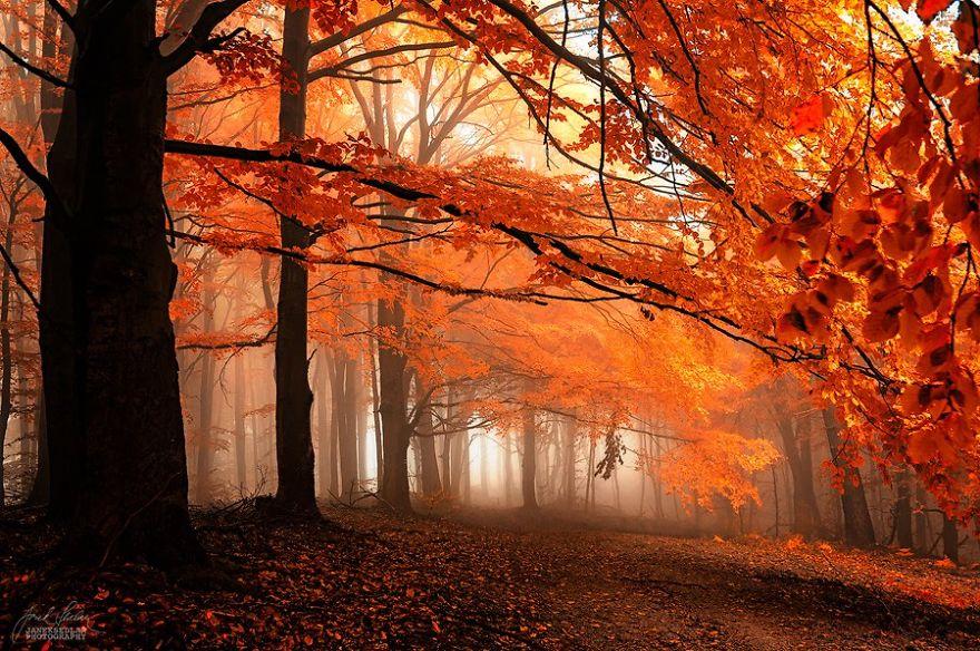 (2) Прекрасни есенски пејсажи кои ќе ве опуштат и подготват за ниските температури