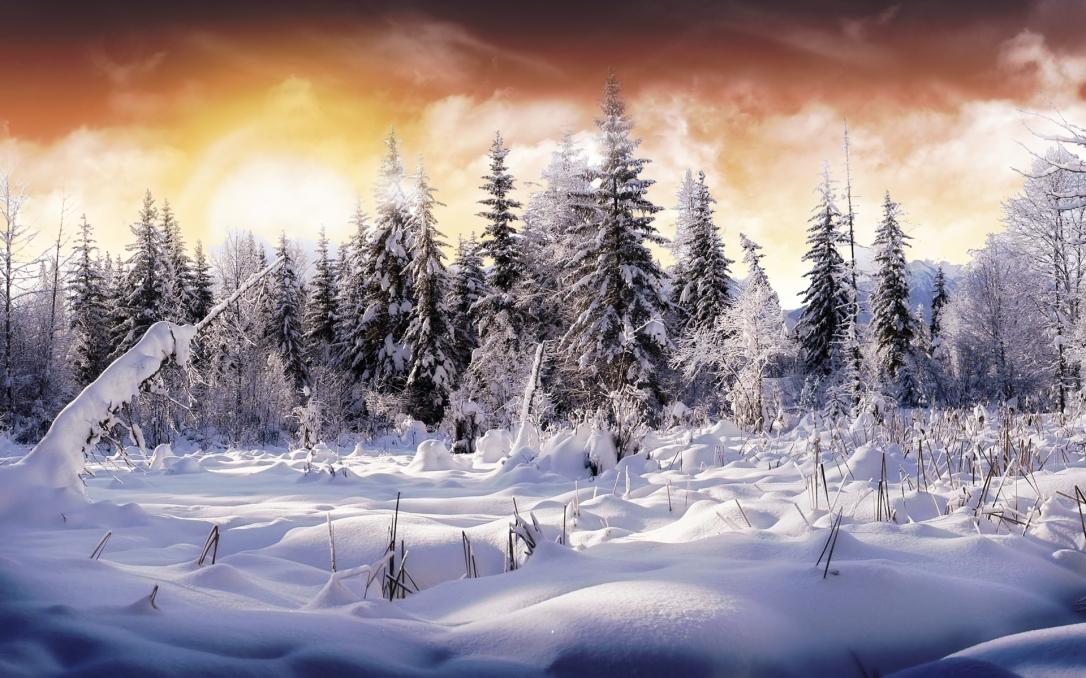 (1) Најубавите снежни десктоп позадини за зимско освежување