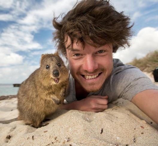 (11) 20 причини зошто Австралија е најдобрата земја за студирање во странство