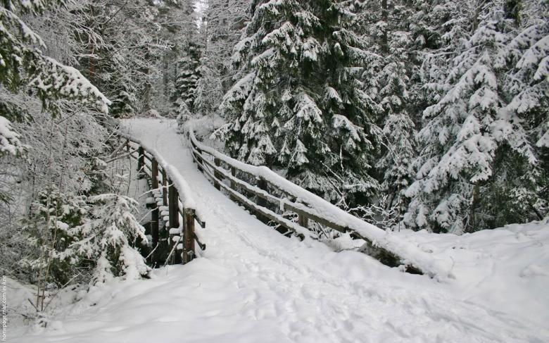 (16) Најубавите снежни десктоп позадини за зимско освежување