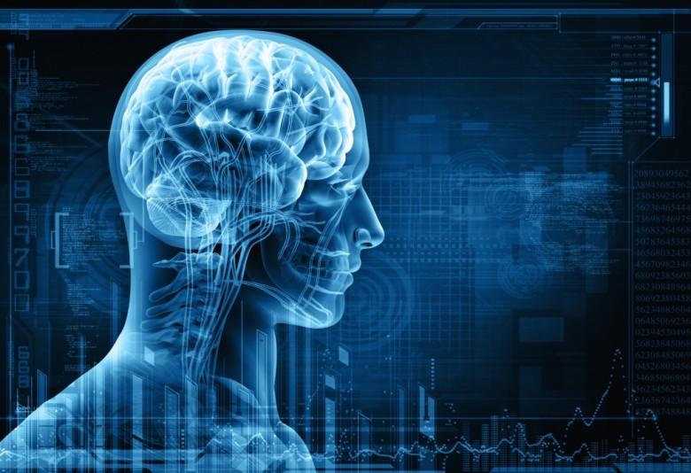 Досега најдеталната мапа на мозокот ни открива 97 сосема нови региони