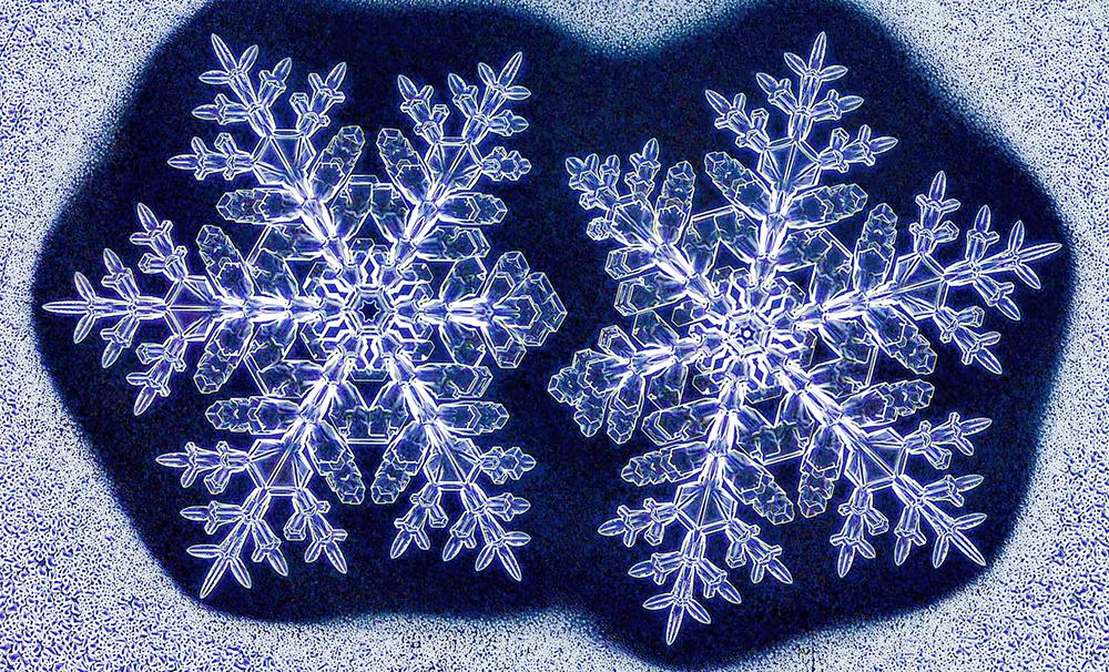 Оформувани во идентични услови, овие две близначки снегулки едвај можат да се распознаат (Kenneth Libbrecht)