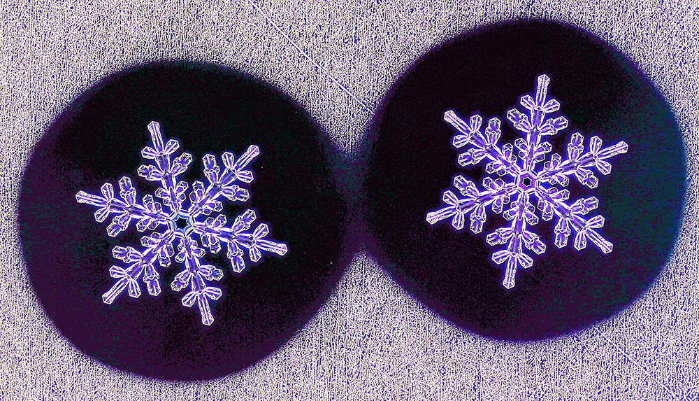 Кој вели дека не постојат две идентични снегулки?