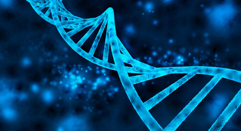 Нашата ДНК не изгледа онака како што мислите
